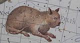 Felis (constellation)