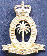 Royal Pacific Islands Regiment
