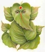 KV India