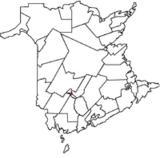 Fredericton-Silverwood