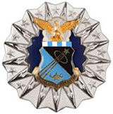 Air Force Academy Professor Badge