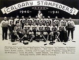 Calgary Stampeders (ice hockey)