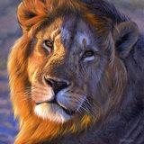 singh lion