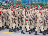 Punjab Regiment (India)
