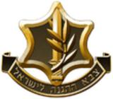 Israel Defense Forces ranks