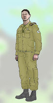 Israel Defense Forces insignia