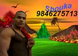 Manju thulli