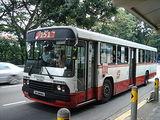 singapore singapore bus service