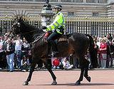 Metropolitan Police Mounted Branch