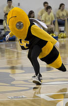 Buzz (mascot)