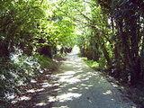 Hayling Island Branch Line