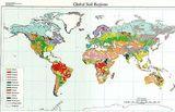 USDA soil taxonomy