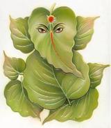 anupam s sharma