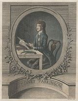 Sydney Parkinson