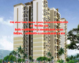 Buy Today Canary Green Projects